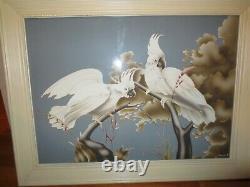 1950's Vintage Mid Century Modern Turner Cockatoo Print Framed
